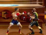 Play Karate Fighter XL